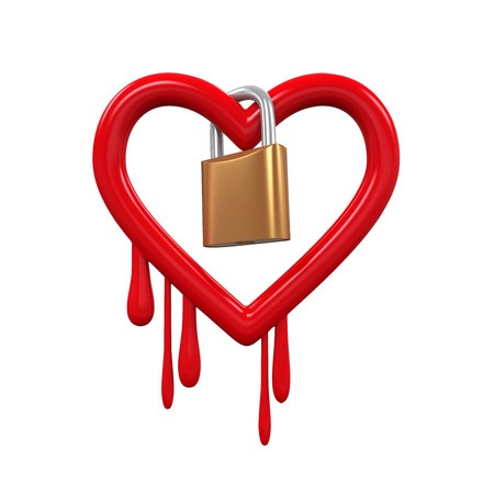 Heartbleed virus security